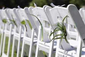 Buy Wimbledon Chairs for Wedding